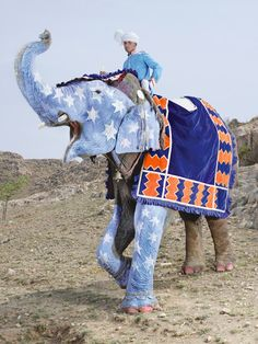 Painted Elephant at the Elephant Festival in Jaipur, Rajasthan, India - Photograph by Charles Fréger, 2013