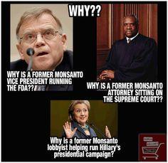 Major conflict of interest! #GMO #Monsanto