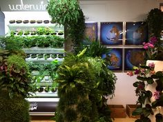 Mediamatic has a big greenhouse and all kinds of innovative projects, exhibitions and events happening all the time.