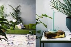 Green sofa and plants Interior Plants, Interior Design, Large Wooden Planters, Green Sofa, Green Rooms, Green Plants, Elle Decor, Indoor Plants, Planting Flowers