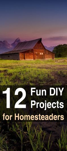 12 Fun DIY Projects For Homesteaders. Instead of spending an arm and a leg for furniture and household appliances, I decided to get crafty. Here are 12 DIY homesteading projects I've done. #Homesteadsurvivalsite #DIY #Projects #Homestead