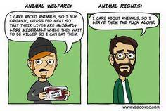 justifications vs justice
