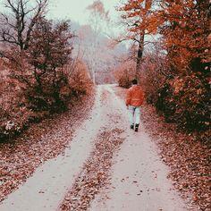 Village, road , autumn , red , fall season