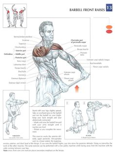 Deltoids & Upper chest #BarbellFrontRaise #workout #gymaholic