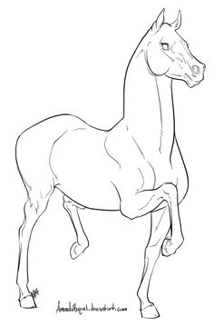 Horse Drawing For Kids Coloring Child