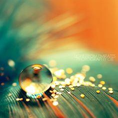 orange & turquoise/aqua