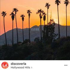 Hollywood Hills 12/7/17