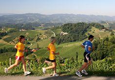 Welschlauf Marathon, S& Marathon, Running, Sports, Photos, Wine Country, Keep Running, Hs Sports, Pictures, Marathons