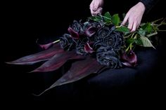 Think Ink – Florist Selling Only Black Roses – Emma Thomas (Miss ...