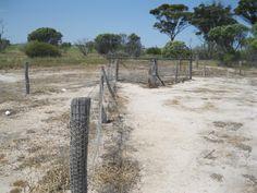 No.2 Rabbit Proof Fence between Quairading and Corrigin
