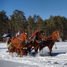 Dashing through the #snow in #Irkutsk, #Siberia Photo: Vladimir Kvashnin #RussiaTravelwithMIR #SiberiaTravelwithMIR #russia #horses #winter #travel #tourism #wanderlust #seetheworld #travelgram #instapassport #instahorse