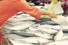 Fresh fish almost still wriggling at Bangtao market, Phuket