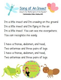 """FREE and original song on the characteristics of an insect. Help kids remember the parts of an insect through song. """"Song Of An Insect"""", by Differentiation Station Creations."""
