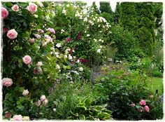 Jahreszeiten im Garten - Frühsommer