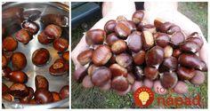 Gaštany nie sú len na ozdobu a vytváranie utešených jesenných dekorácií. Dokážu urobiť veľa aj pre naše zdravie. Eggplant, Life Is Good, Fruit, Vegetables, Health, Style, Noel, Syrup, Salud