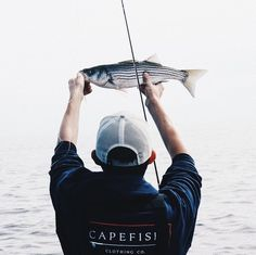 "Capefish on Instagram: ""Hoping for a weekend of sweet victories 🏈🎣 . . . . . . . . #Capefish #gogetit #onthefly #tightlines #flyfishing #flyfish #striper…"""