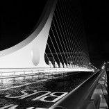 Samuel Beckett Bridge Samuel Beckett Bridge, Photography Portfolio, Dublin, Opera House, Photographs, Shots, Abstract, Building, Artwork