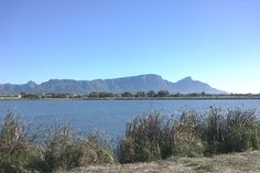 """After 15 years of negotiations, the City of Cape Town recently decided not to let developers convert natural Princess Vlei land to a mall. This recognition by the authorities of the valuable contribution that green spaces make to local communities embodies an encouraging  move towards """"design [thinking] that reconnects our city and reconciles our communities,"""" a stated theme for 2014.  #worlddesigncapital #CapeTown #nature #publicspace #art #design Economic Development, Design Thinking, 15 Years, Cape Town, Community, Mountains, City, World, Beach"""