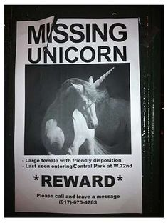 NYC Artist Camomile Hixon Tries to Find her Missing Unicorn #pets