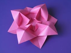 Fiore bombato - Curved flower   Flickr - Photo Sharing!