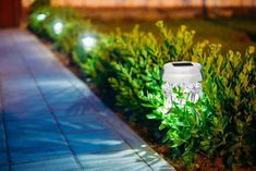 When the solar goes down, Solar Powered Landscape Lighting performs its roles. Greatest photo voltaic out of doors lights are LED sorts with wonderful Best Outdoor Solar Lights, Solar Powered Outdoor Lights, Solar Patio Lights, Backyard Lighting, String Lights Outdoor, Outdoor Lighting, Garden Lamps, Outdoor Landscaping, Landscape Lighting
