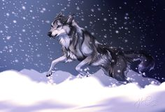 Face the storm by Cederin on DeviantArt