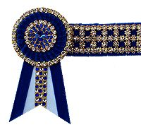 NVS Equine Attire Horse Stuff, Bling, Horses, Accessories, Image, Jewel, Horse, Jewelry Accessories