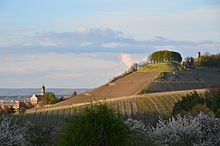Counts of Castell - Wikipedia, the free encyclopedia