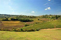 Tuscan landscape #vineyards #farmhouse