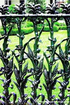 Corn Fence in New Orleans. Take a drive through the garden district, & you're sure to find it! 1448 Fourth Street Cookies In Bloom, Portal, Wrought Iron Fences, Fence Gate, Fencing, New Orleans Louisiana, Nova, Iron Work, Garden Gates