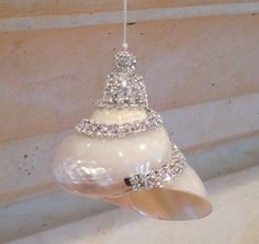 Beach Christmas Ornament Natural Seashell by SeashellCollection
