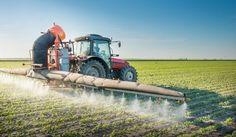 Cancerígeno: O Herbicida Mais Vendido no Mundo