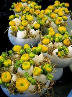 Ken Marten: Yellow ranunculus and straw in egg shells. Easter, The Connaught Hotel, Mayfair, London Deco Floral, Arte Floral, Easter Flowers, Spring Flowers, Easter Wreaths, Easter Crafts, Flower Decorations, Diy Decoration, Happy Easter