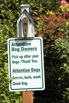 Tips for a Safe and Fun Visit to the Dog Park - Dog Pet Care Corner - PetSolutions