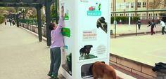 Animais de rua estão acostumados a serem durões em brigas, alimentar-se do lixo e aguentar frio e chuva. Mas e se pudéssemos ajudá-los a ter uma vida melhor? A empresa turcaPugedoncriou uma ação …