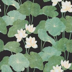Customize any space or decor with the Roommates® Lily Pads Vinyl Peel & Stick Wallpaper. This style of lilypad print with colorful leaves in intricate details, this peel and stick wallpaper is reusable. Paintable Wallpaper, Wallpaper Roll, Peel And Stick Wallpaper, Wall Wallpaper, Bathroom Wallpaper, Adhesive Wallpaper, Green Wallpaper, Perfect Wallpaper, Pastel Wallpaper