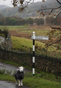 Lake District National Park in Cumbria, England.