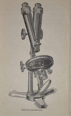 Beck's First Class Microscope - Heather 1884
