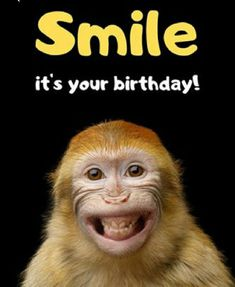 Memes Funny Happy Birthday Pictures, Happy Birthday Quotes For Friends, Birthday Wishes Messages, Birthday Wishes Funny, Humor Birthday, Birthday Humorous, Sister Birthday, Birthday Sayings, Birthday Ideas