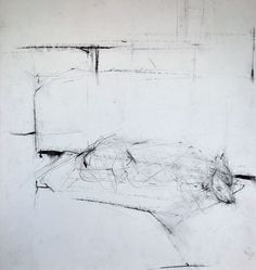Ginny Grayson. Bat dreaming, 2009. Charcoal on paper. 56.5 x 49.5 cm