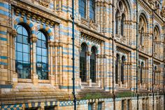 Wall Of Natural History Museum In London Photograph