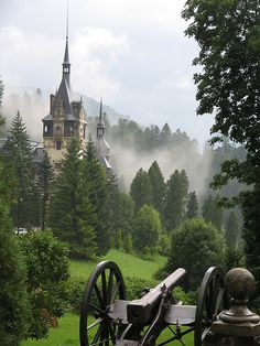 Peleș Castle (Castelul Peleș) is a Neo-Renaissance castle in the Carpathian Mountains, near Sinaia, in Prahova County, Romania, on an existing medieval route linking Transylvania and Wallachia, built between 1873 and 1914. Its inauguration was held in 1883. Peleș became the world's first castle fully powered by locally produced electricity. Wiki. Peles Castle, Romania, Cathedral, Temple, Temples, Cathedrals, Buddhist Temple