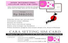 japan international cellular data sim card : http://bit.ly/docomocard