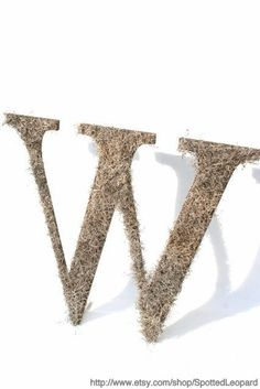 Spanish Moss Covered Wedding Door Initial Letter Wreath