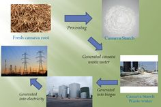 Investment Opportunity in a cassava starch processing plant and biogas plant in Cambodia
