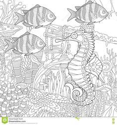 Zentangle Stylized Aquarium Stock Vector - Image: 78281300