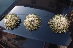 Weddings, Plants, Wedding, Plant, Marriage, Planets