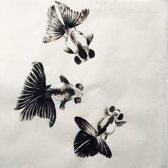 Goldfish Tattoo, Fantail Goldfish, Goldfish Care, Carpe Koi, Cool Fish, Beautiful Fish, Drawing Challenge, Fish Art, Swimmers