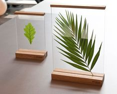 Floating frames 'between' to create your own composition - Diy Decoration House Plants Decor, Plant Decor, Diy Y Manualidades, Decoration Plante, Leaf Art, Floating Frame, Floating Picture Frames, Diy Frame, Resin Crafts