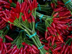 Red Chile Peppers in Bunches at the Rialto Market in Venice, Italy by Todd Gipstein